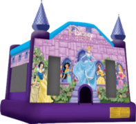 Disney Princess House